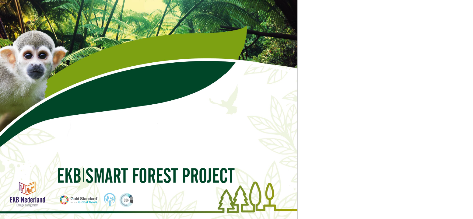 EKB Smart Forest Project